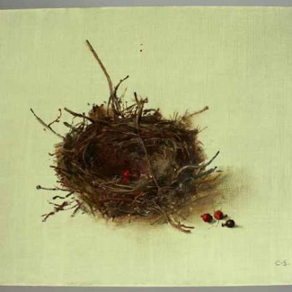carolyn-sergeant-nest-1