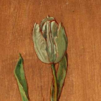 carolyn-sergeant-tulips-2