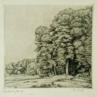 Waldeingang image